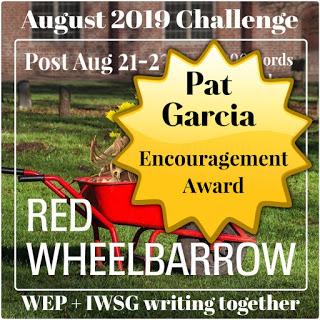 RedWheelbarrow6_Pat